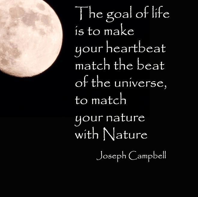 Joseph Campbell Quotes On Love: A Quote Of Joseph Campbell